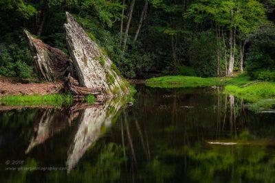 Arrowhead Reflections