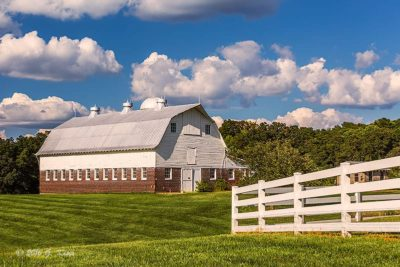 Dairy Barn in the Summer