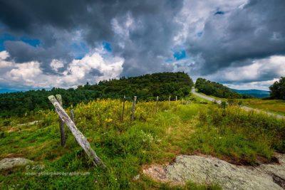 Goldenrod Ridge