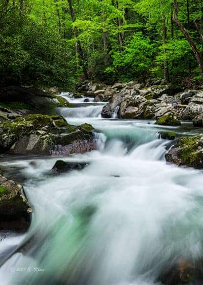 The Aqua Rapids