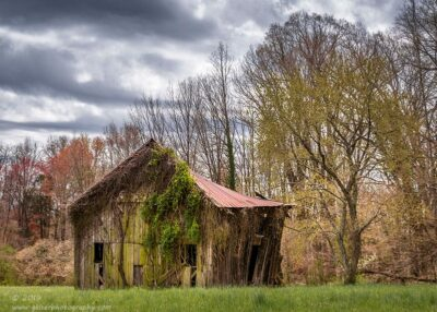 """""""Pastoral Spring"""",   Canon 5D Mk3, 70-200mm f/2.8L Mk2, Singh-Ray Color Combo Polarizer, and Galen Rowell 3-Stop Soft Edge ND Grad"""