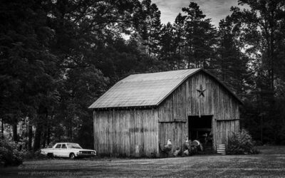 """""""Home to Roost"""",   Canon 5D Mk3, 70-200mm f/2.8L Mk2, Singh-Ray Color Combo Polarizer, Galen Rowell 2 and 3-Stop Soft ND Grad, Converted to B&W in Lightroom"""