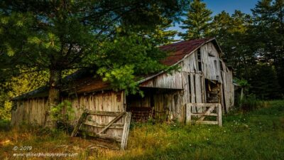 """Needles on a Tin Roof"",   Canon 5D Mk3, 24-70mm f/2.8L Mk2, Singh-Ray Color Combo Polarizer"