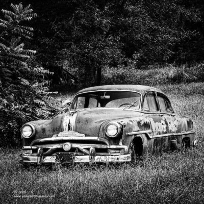"""Rip Van Winkle"",   Canon 5D Mk3, 70-200mm f/2.8L Mk2, Singh-Ray Color Combo Polarizer, Converted to B&W in Lightroom"
