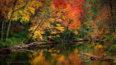 """""""Burning Autumn"""",   Canon 5D Mk3, 70-200mm f/2.8L Mk2, Singh-Ray Color Combo Polarizer, Galen Rowell 2-stop soft edge ND Grad"""