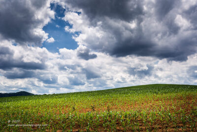 """""""Calm on the Farm"""",   Canon 5D Mk3, 16-35mm f/2.8L Mk2, Singh-Ray Color Combo Polarizer"""