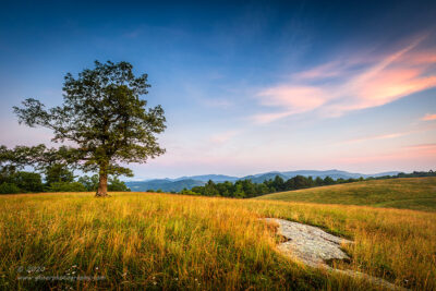 """Barefoot Meadow"",   Canon 5D Mk3, 16-35mm f/2.8L Mk2, Singh-Ray Galen Rowell 3-Stop Soft ND Grad"