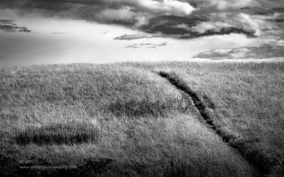 """Into the Never"",   Canon 5D mk3, 70-200mm f/2.8L Mk2, Singh-Ray Color Combo Polarizer, Converted to B&W in Lightroom"