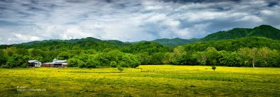 """""""Alone in the Field"""",   Canon 5DS R, 70-200mm f/2.8L Mk2, Singh-Ray Color Combo Polarizer, 7 images stitched in Lightroom"""
